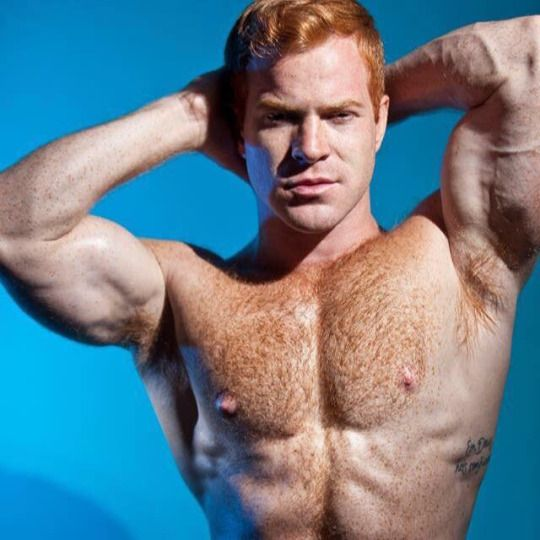 http://furrymacho.tumblr.com/ | Ginger men, Redhead men