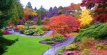 Where to See Fall Foliage in Vancouver, BC: Vancouver Fall Foliage at Queen Elizabeth Park