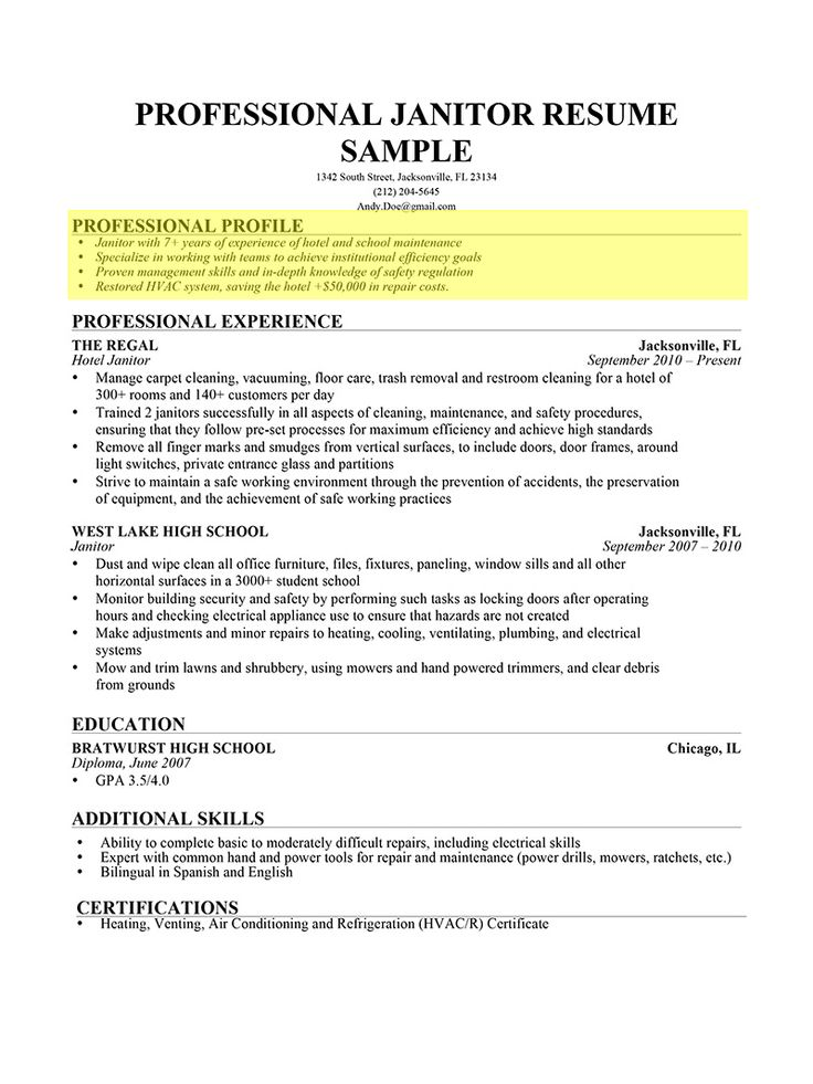 Examples Of Professional Profile On Resume - Examples of Resumes