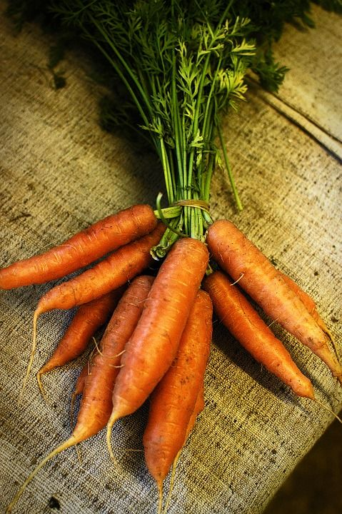 Mrkev, Jídlo, Farm, Organický