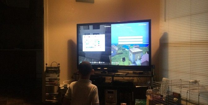 My grandson playing Sims three