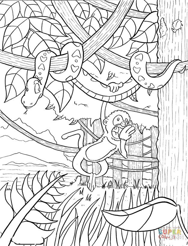Rainforest Coloring Page Free Printable Coloring Pages Jungle Coloring Pages Forest Coloring Pages Tree Coloring Page