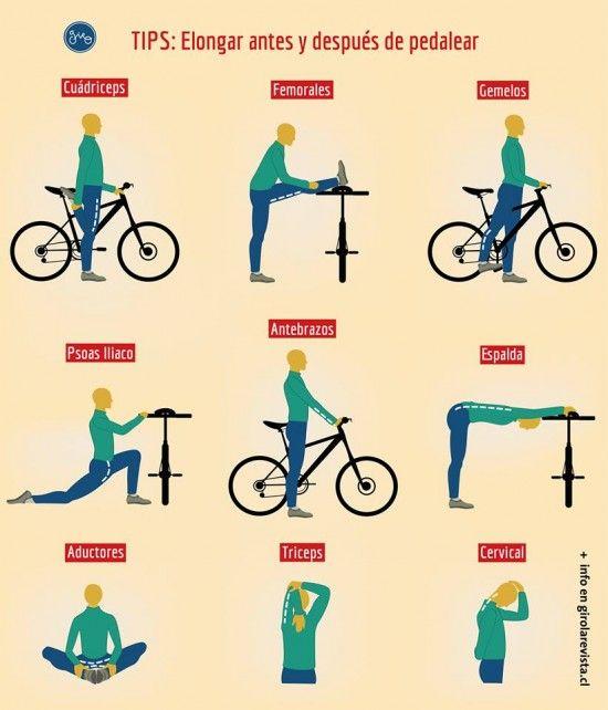 La elongación muscular es el trabajo físico que se realiza dentro de una actividad deportiva. Luego del ejercicio, la musculatura queda con una contracción, en la cual por medio de la elongación logramos que el músculo llegue a un estado pasivo. La e...