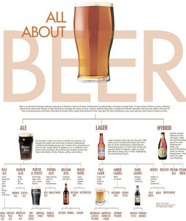Beer 101: All About Beer Styles