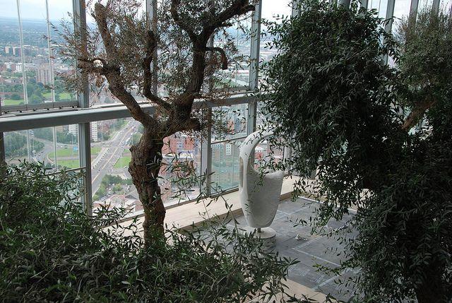 Ian Simpsons indoor, penthouse garden in Manchester.