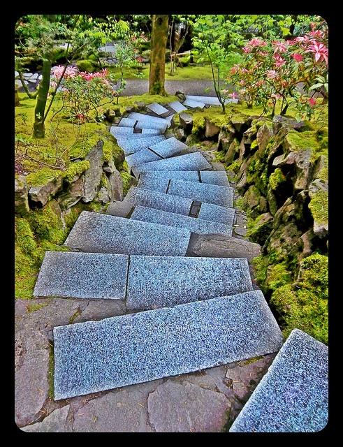 236 Best Portland Oregon Images On Pinterest Portland Oregon Travel And Traveling