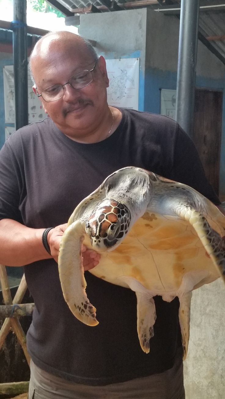 Visiting a Turtle Hatchery in Sri Lanka with Pete's Travelling Pans