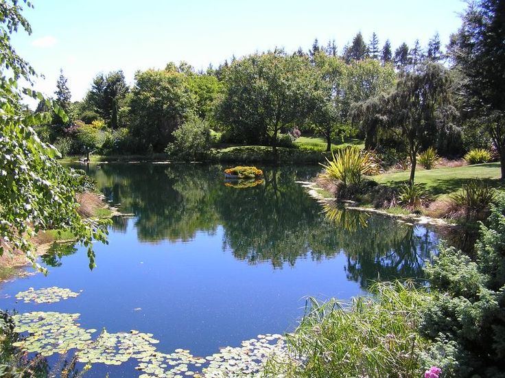 53 best images about pond landscaping on pinterest for Landscaping around ponds