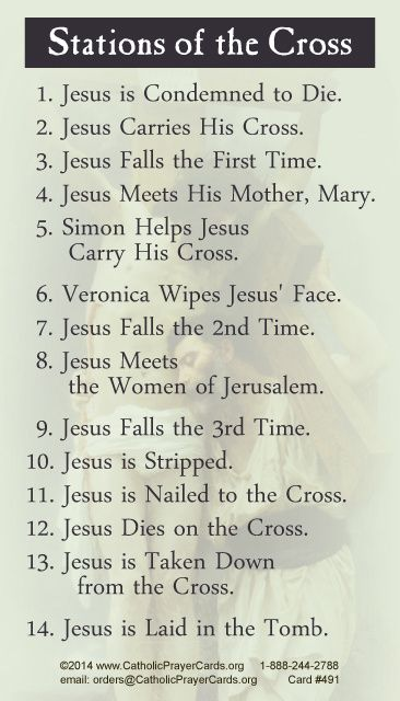 Stations of the Cross Prayer Card                                                                                                                                                                                 More