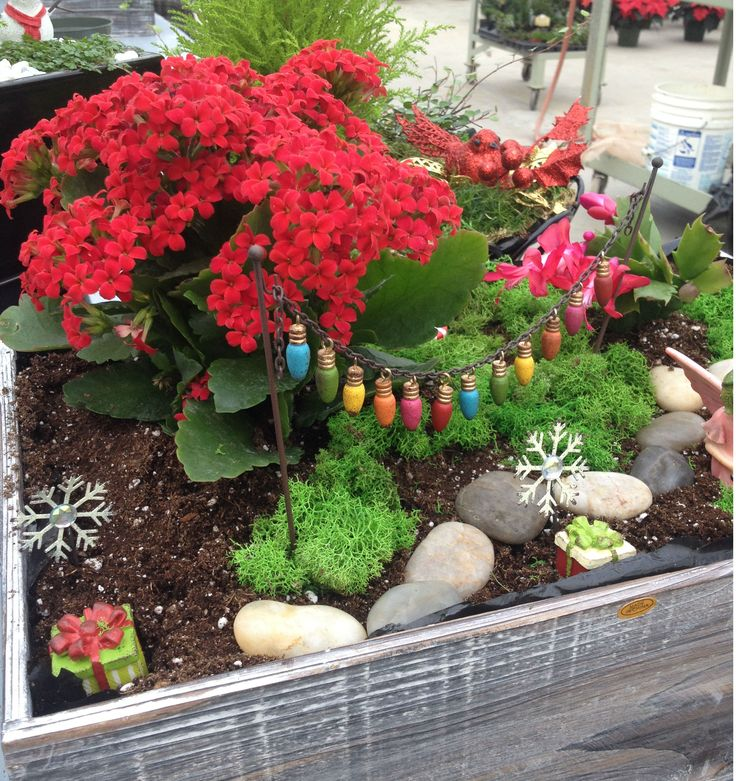 A touch of color and with some Winter fun makes this fairy garden bright and cheerful.