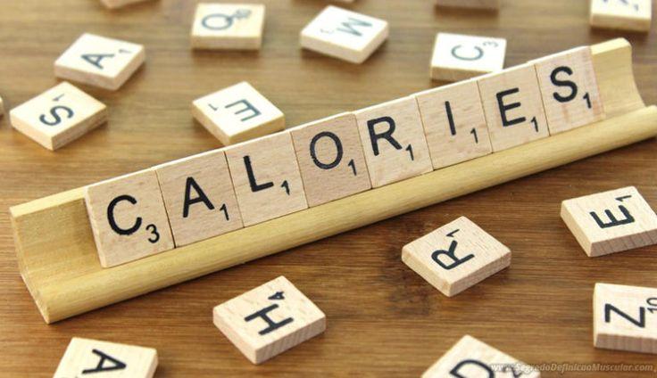 Gasto Calórico Diário e Metabolismo Basal Na Dieta Para Ganhar Massa Muscular