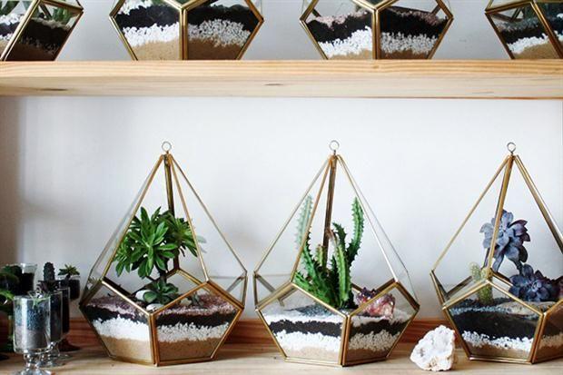 Pequeñas plantas para espacios de pocos metros  Herbario nos trae jardines de invierno en miniatura.