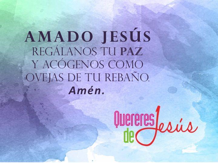 Amado Jesús regálanos tu paz y acógenos como ovejas de tu rebaño. Amén. #QuereresdeJesús