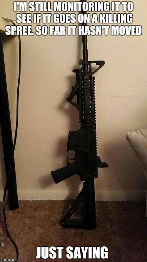 Guns don't kill people. BAD people with guns kill people.