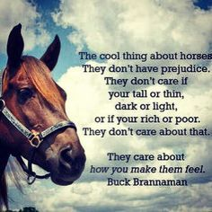 buck brannaman horse quotes - Google Search