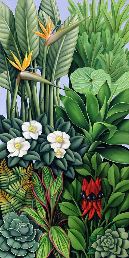 Foliage II by Catherine Abel {2005} oil on canvas
