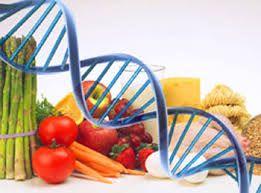 Vuoi un programma di dimagrimento realizzato su misura per te? La dieta genetica è la soluzione ideale..100% unica, proprio come te!