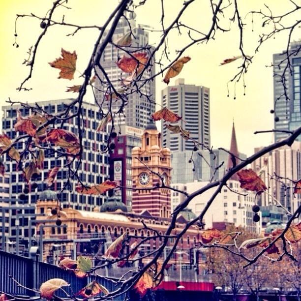 Early Winter, Melbourne - Kate Karsten
