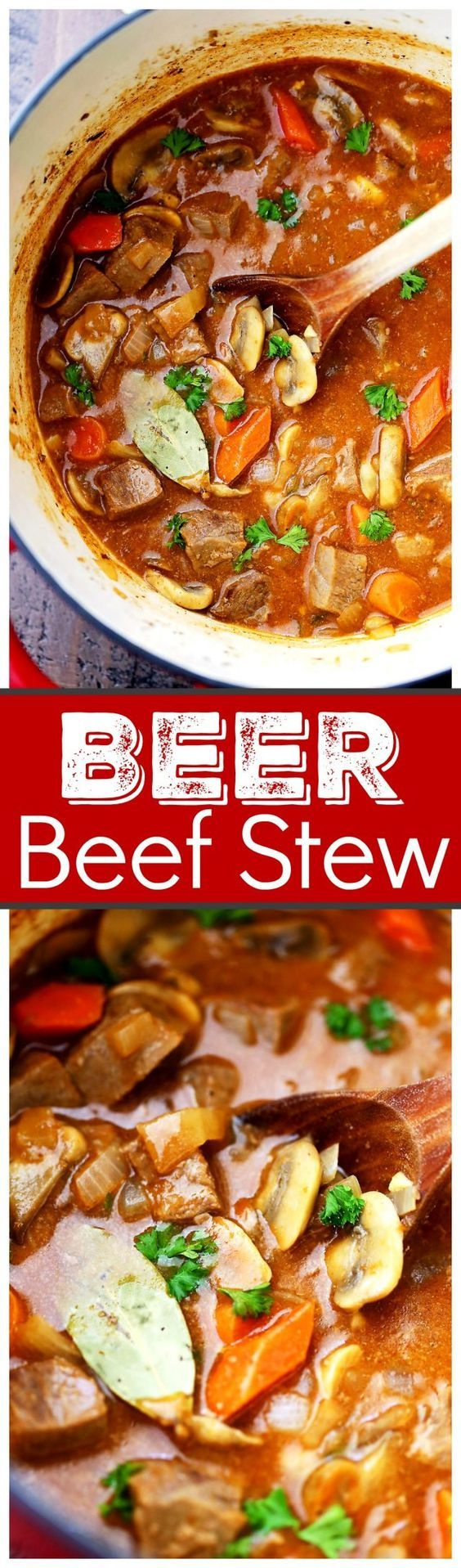 Super easy, but delicious and quick hearty stew cooked in a dutch oven with beef, mushrooms, carrots, and beer!