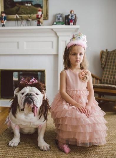 Little Harper has a BBFF - bulldog best friend forever.