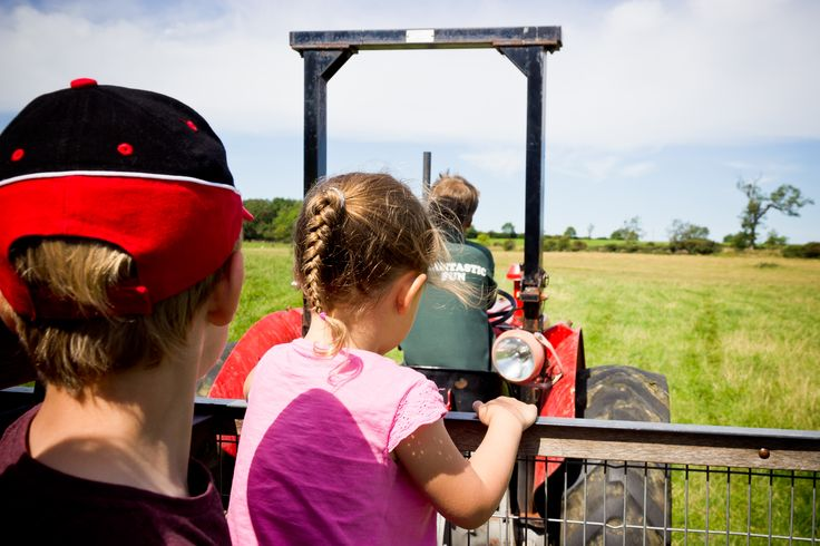 We racked up 10,000 steps at Whitehouse Farm covering an estimated 3.5 miles. That's 10,000 steps of fun at the farm!