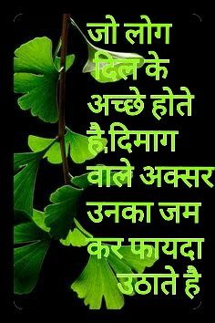 Hindi Quote...........Dil!!