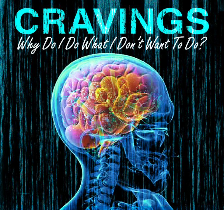 CRAVINGS - Why Do I Do What I Don't Want To Do? address our need for freedom from God's point of view and yields real solutions to our entrapment. 2-CD Set $10 http://www.liferecovery.com/sunshop/index.php?l=product_detail&p=17047