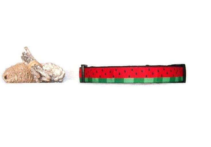 Collar perro sandia Collar de paseo perro Collar 2,5 cm Collar perro verde Collar perro rojo Collar divertido Collar fruta Collares perros de ElTallerdeRuna en Etsy
