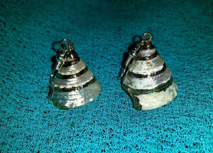 Shell earings