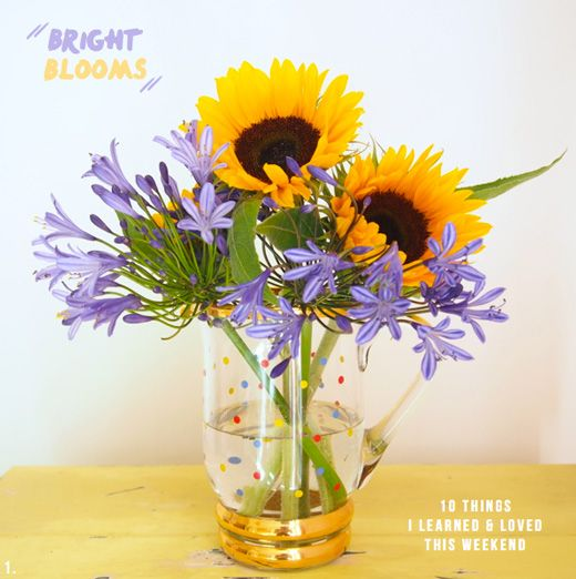 Sunflowers and agapanthus in a polka dot vase