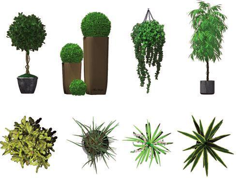 http://www.doschdesign.com/images2/Red-DVI-IndoorPlants.jpg