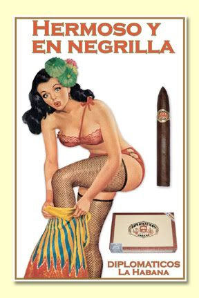 Cuban Cigar poster - Diplimaticos are a superb cigar for what it's worth