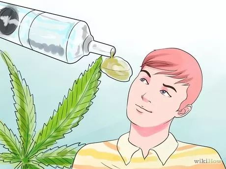 Medizinisches Marihuana Öl herstellen – Frances Spears