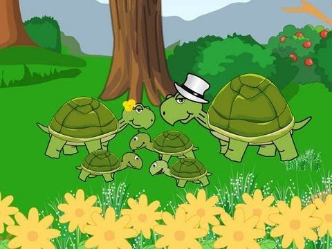 ▶ La famille Tortue - YouTube