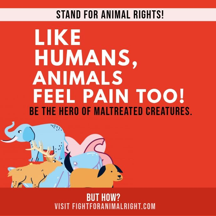 Animal Rights Awareness Instagram Post In 2021 Animal Rights Instagram Posts Minimalist Poster