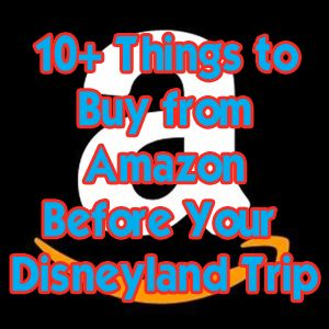 10+ things to buy from Amazon before your Disneyland trip - DLR Prep School