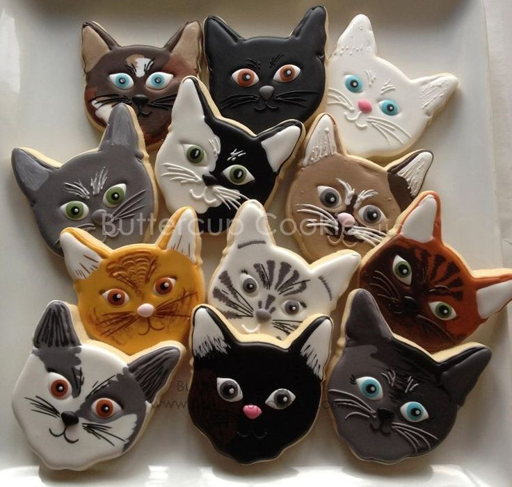 "samirafee: ""#CATS COOKIES  facebook.com by Buttercup Cookie """