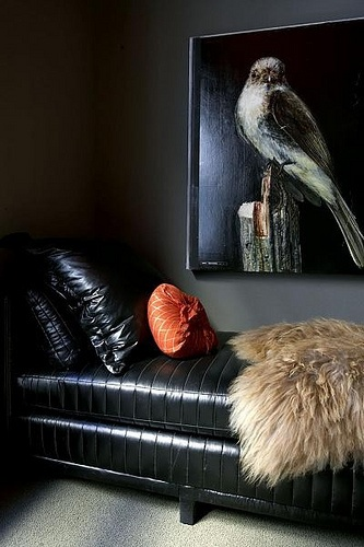 dark and sexy...interior, bird art and fuzzy blanket!