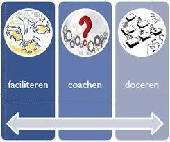 Regioleren is een andere manier van leren, gericht op het gezamenlijk werken aan regionale, authentieke beroepsvraagstukken. Het leren van de student én de regio staat centraal, kenniscreatie door cocreatie (een (sociaal) constructivistische opvatting over leren). Dit vraagt ondernemerschap, leiderschap. en andere rollen als businessontwikkelaar, leervraagarticulator, actor, procesbegeleider, coach, expert, onderzoeker, assessor, curriculumvernieuwer en lerende in een leernetwerk.