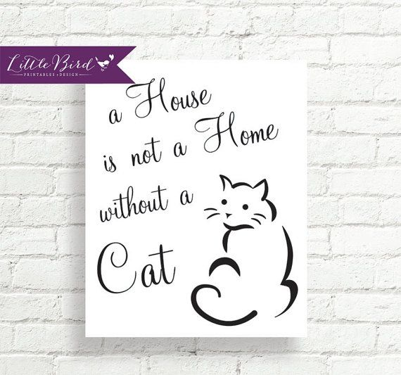 A House Is Not A Home Without A Cat Super Cute Wall Print