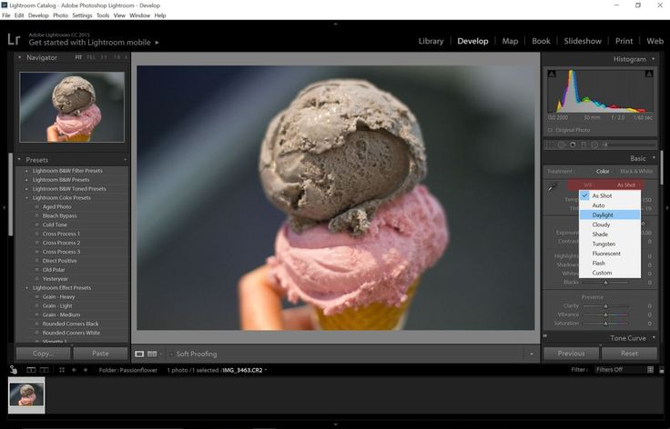 A Bloggers Guide To Editing Photos