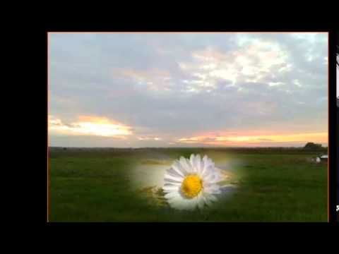 Jákó Vera -  Ez a föld a hazám