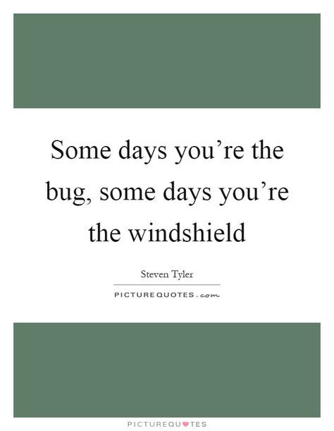 Some Days Youre The Bug Some Days Youre The Windshield Picture
