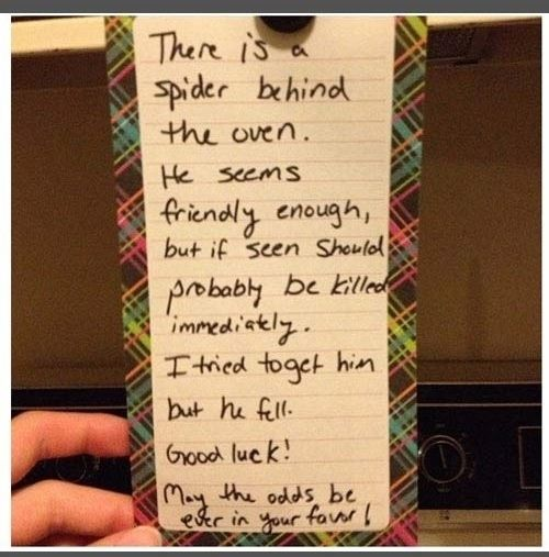 There is a spider behind the oven | 10 Funny Roommate Notes