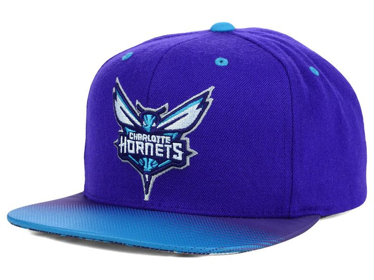 Charlotte Hornets Mitchell & Ness NBA Stop on a Dime Snapback Cap
