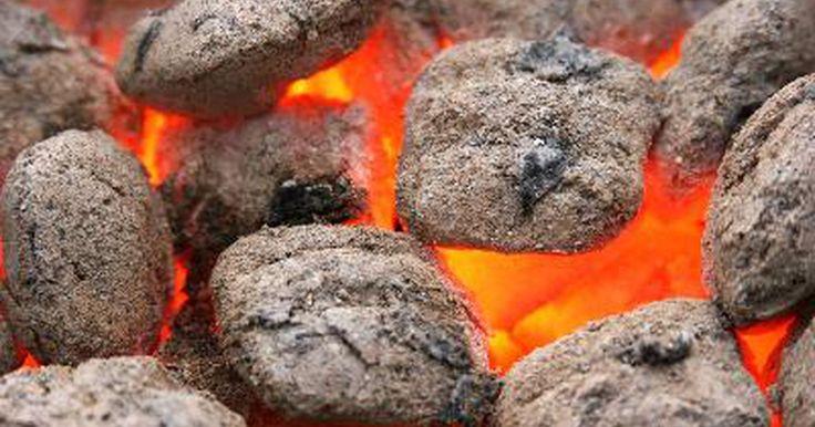 ¿Es el carbón vegetal una opción saludable para cocinar?. Asar a la parrilla con carbón vegetal es un pasatiempo popular para muchos estadounidenses en los meses cálidos. Cocinar con carbón es popular porque las parrillas de carbón son menos costosas que los asadores de gas. Algunas personas prefieren el sabor de los alimentos que se cocinan al carbón por sobre los alimentos cocinados con gas. Hay una ...