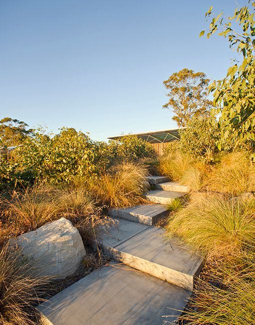 11-Lizard Log Park Bioswale « Landscape Architecture Works | Landezine