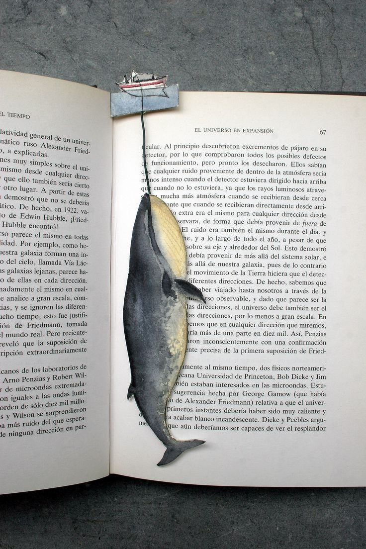 Whale point book