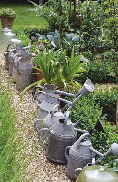 Catch the rain in watering cans.
