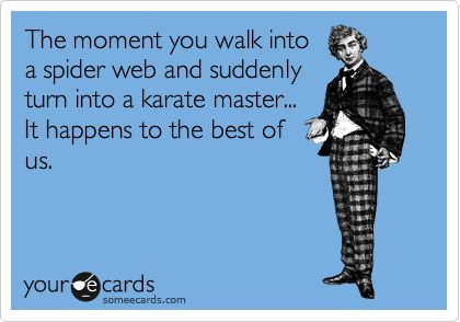 The moment you walk into a spider web and suddenly turn into a karate master... It happens to the best of us.